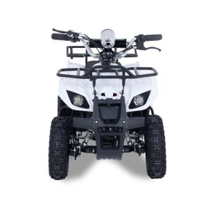 Electric quad Monster 1000W 36V white prijstechnisch electrickidscar