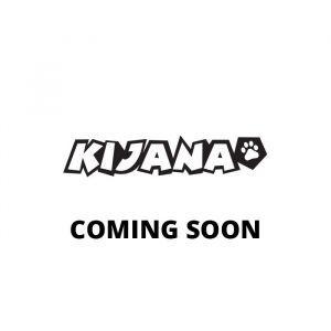 Kijana electric beach buggy Conquerer