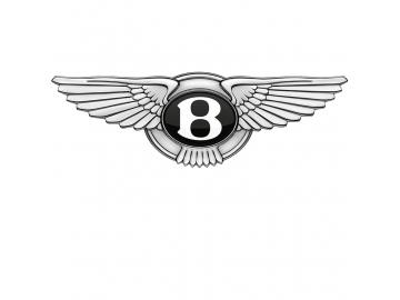 Bentley kids cars